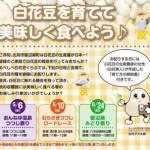 icatch-tane-info